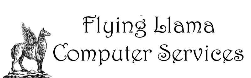 Flying Llama Computers