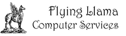 Flying Llama Computers, Header